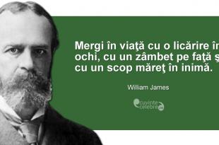 Citat-William-James