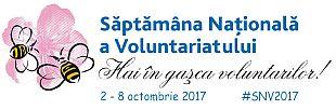 Voluntariat2017