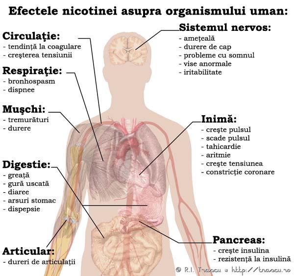 nicotină și erecție)