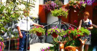 Soții Serebrian din Hădărăuți au creat un colțișor de rai acasă